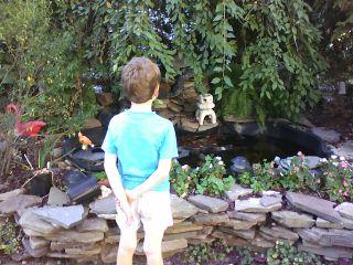 Glen and koi pond