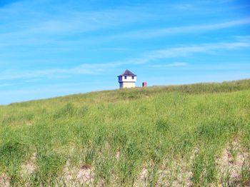 Cape Cod National Seashore dune grass