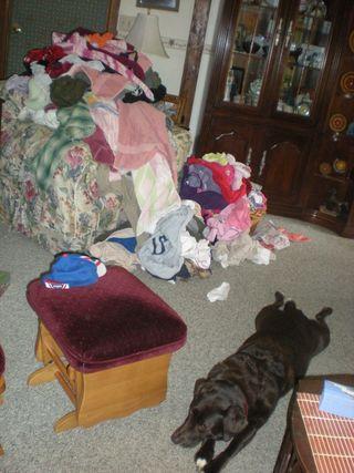 Doofus-laundry