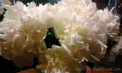 Day 138 - Peonies
