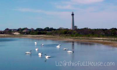 Day 133 - Cape May Light House