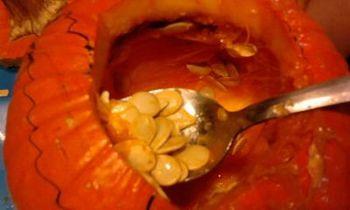 Pumpkin Guts 2010