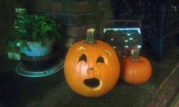 Great Pumpkin 2010