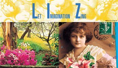 Liz's Card