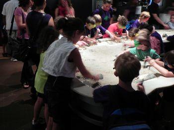 Kleenex Field trip to AMNH The Big Dig