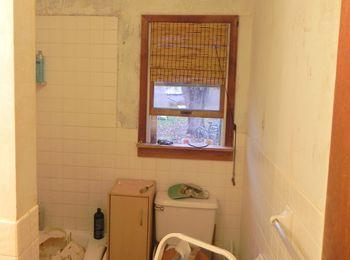 Bathroom Before 5
