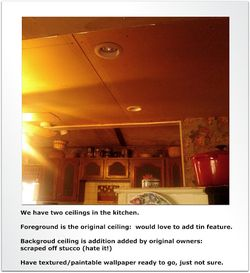 Project Kitchen Ceilings
