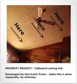Prority Project Cathedral Ceiling Left