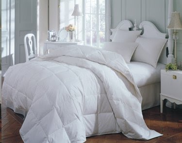 Robin Wilson Hypoallergenic Bedding