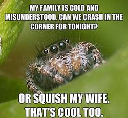 Misunderstood-spider-meme-squish-wife