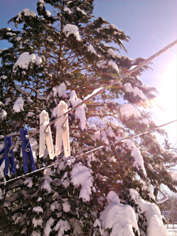 Frozen clothes line