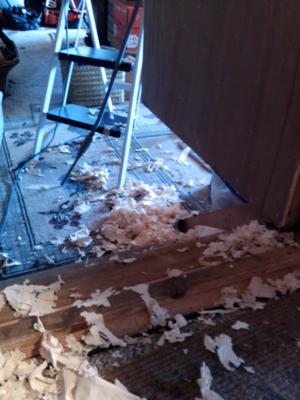 Christmas Door Peeled
