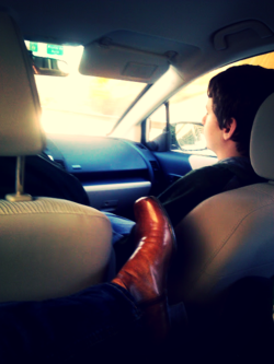 View from the backseat
