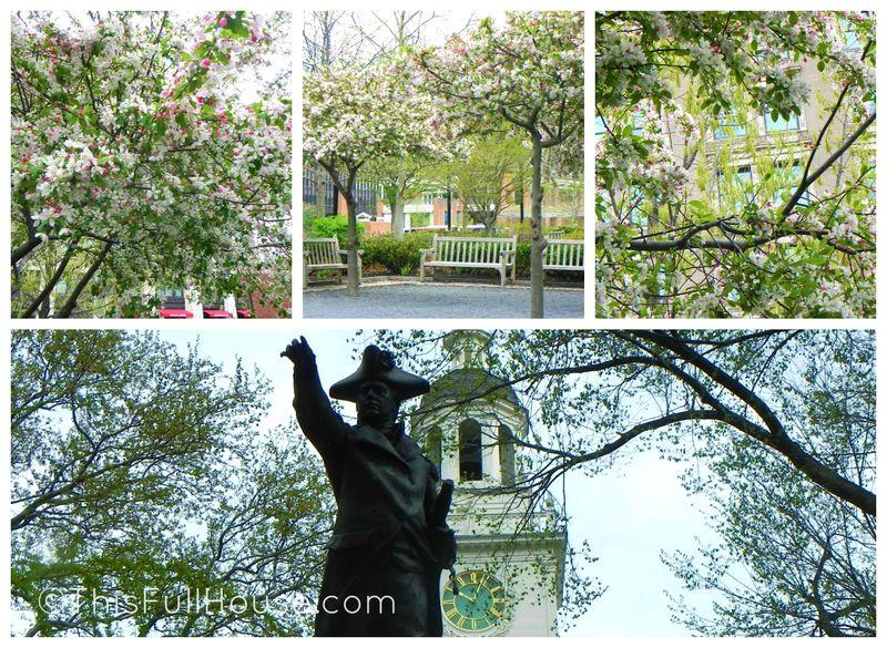 Philadelphia in the Springtime
